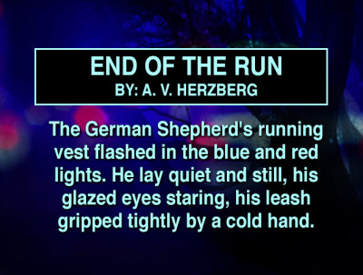 End of The Run